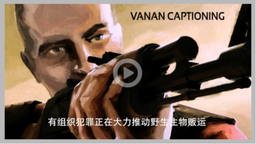 Blazing Fast Chinese Subtitling Services Starts at $1.00 Minute